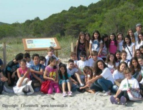 Alla Spiaggia del Pevero installato il secondo pannello dei Forestelli
