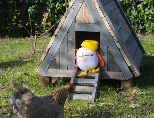 Pollaio fai da te: Costruire una Casetta per Galline Nane del Giardino